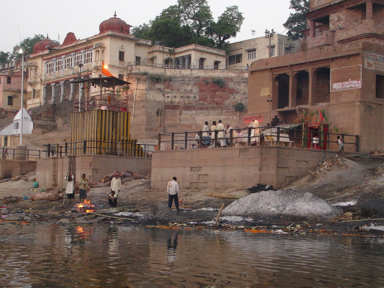 Failing to fully understand the concept of sanitary cremation, the Mongrels dump the half-burned remnants into the Ganges River. At least the massive catfish enjoy regular mealtime enrichment.