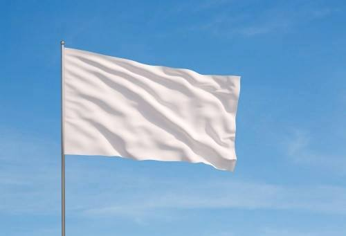 In South Carolina, the Republican Battle Flag flies over Columbia
